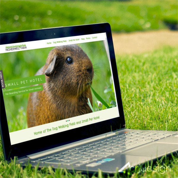 Higherwell Farm Web Design Branding Newquay